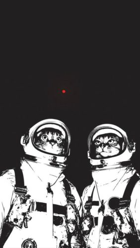 kot kosmonauta - tapeta