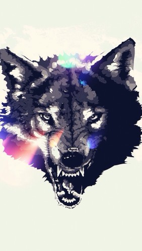 zły wilk - tapeta